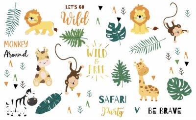 Posters Safari object set with monkey,giraffe,zebra,lion,leaves. illustration for logo,sticker,postcard,birthday invitation.Editable element