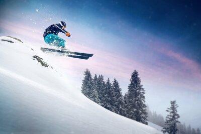 Posters Saut À Ski