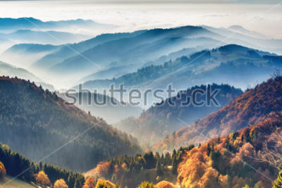 Posters Scenic mountain landscape. View on the Black Forest, Germany, covered in fog. Colorful travel background.