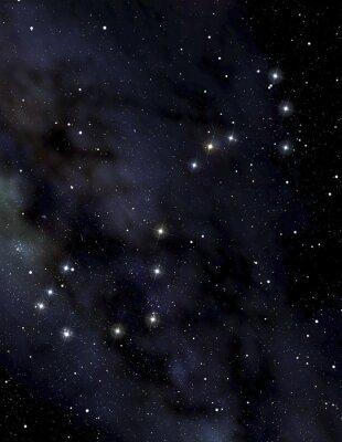 Posters Scorpion constellation dans le ciel de la nuit