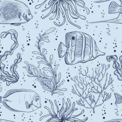 Posters Seamless avec des poissons tropicaux, des plantes marines et des algues. Main Vintage vie marine dessinée d'illustration de vecteur. Conception pour la plage d'été, des décorations, impression, modèle