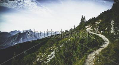 Posters Sentier de randonnée à travers des pics alpins boisés sous le soleil de l'été avec vue sur les sommets lointains et les plages dans un paysage autrichien pittoresque