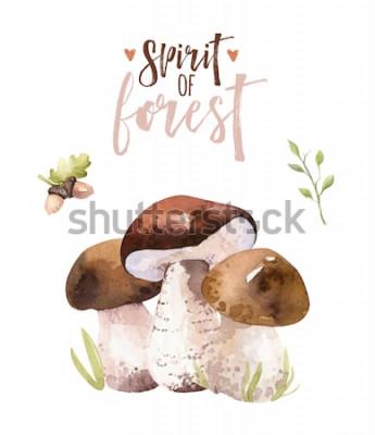 Posters Set de champignons de la forêt Bohème aquarelle, illustration de l'amanite affiche boisé isolé, agaric de mouche, boletus, décoration de champignon boletus orange-cap.