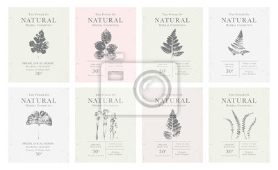 Posters Set of customizable vintage label of Natural organic herbal products.