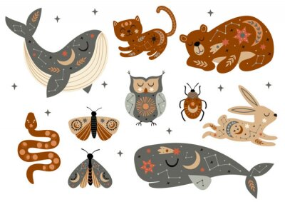 Posters set of isolated celestial animals