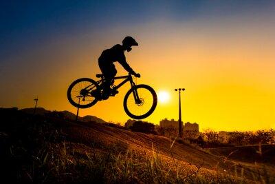 Posters Silhouette de Stunt Rider Bmx - ton de couleur réglé