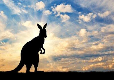 Posters Silhouette, kangourou, contre, ciel