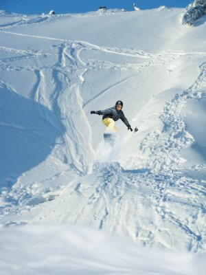 Posters Snowboard.