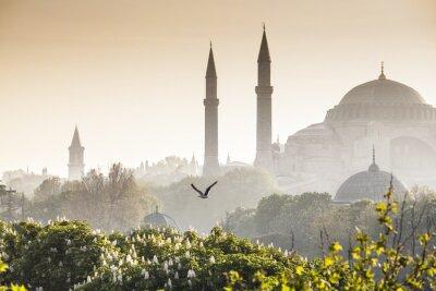 Posters Sultanahmet Camii / Mosquée Bleue, Istanbul, Turquie
