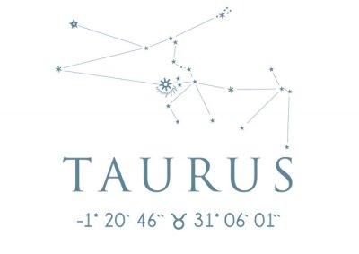 Posters TAURUS