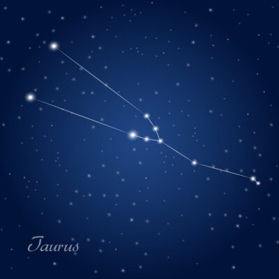 Posters Taurus constellation zodiac sign at starry night sky