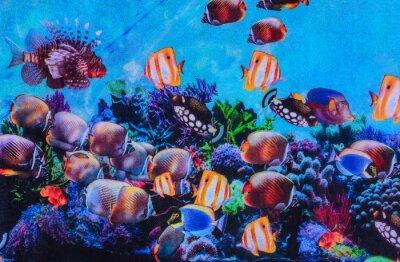 Posters Texture de tissu imprimé aquarium rayé