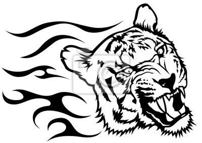 Posters Tigre Tête Flammes Noir Blanc Dessin Illustration Vecteur