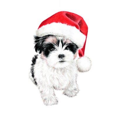Posters tiré par la main chiot avec le Père Noël chapeau, amusant mignon carte de Noël des cliparts, des croquis de chien est coloré dessin au crayon, vacances clip art illustration isolé sur fond blanc