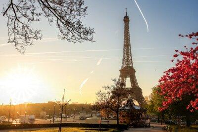 Posters Tour Eiffel, ressort, arbre, paris, france