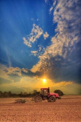 Posters Tracteur dans le domaine
