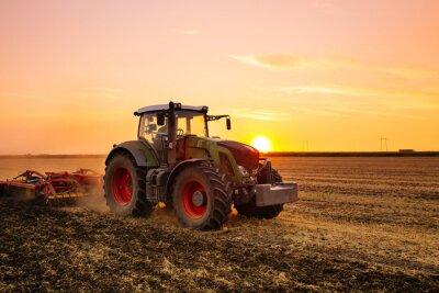 Posters Tracteur sur le terrain de l'orge au coucher du soleil.