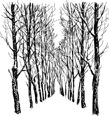 Posters Trees in the winter park