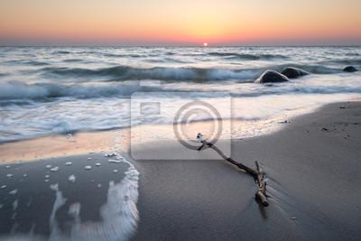 Posters Treibgut am Ostsee Strand auf Fehmarn bei Sonnenaufgang