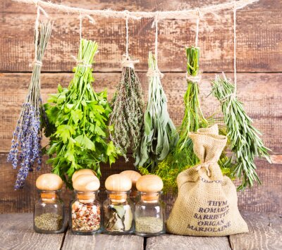 Posters various fresh and dried herbs