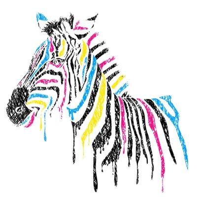 Posters Vecteur de zèbre à rayures colorées, style de croquis