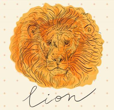 Posters Vecteur, Illustration, lion, tête