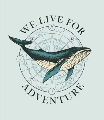 Posters Vector banner with big hand-drawn whale on the background of wind rose and old map in retro style. Illustration on the theme of travel, adventure and discovery with words We live for adventure