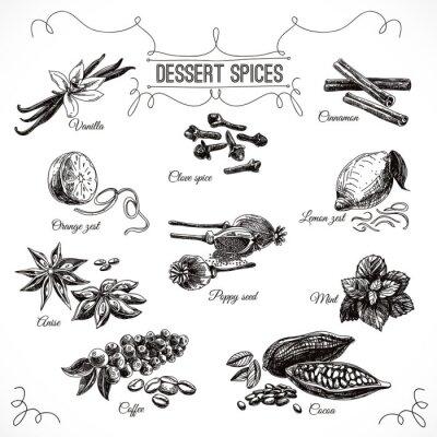 Posters Vector Hand Drawn réglé avec le dessert épices.