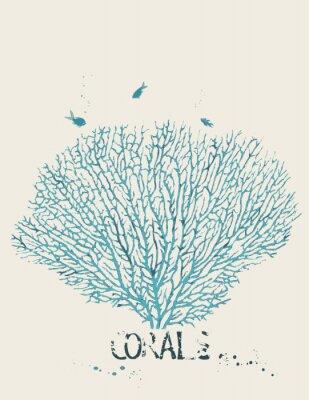 Posters Vector illustration d'un corail de ventilateur