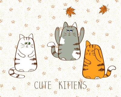 Posters Vector illustration de trois mignons chatons griffonnage.