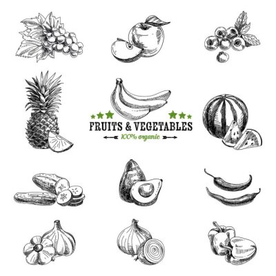 Posters Vector set of fruit and vegetables.