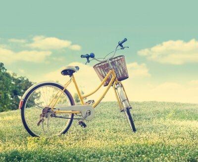 Posters Vélos sur le champ de fleur blanche et de l'herbe au soleil la nature de fond