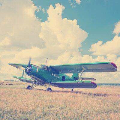 Posters Vieux, avion, vert, herbe