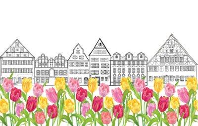Posters Vieux, bâtiments, Maisons, Amsterdam, fleur, tulipes, ruelle