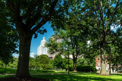 Posters View of Downtown Hartford, CT from the State Capitol Grounds