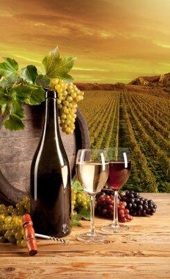Posters Vin dans le vignoble