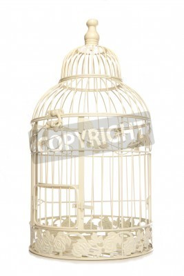 Posters Vintage looking bird cage isolated studio cutout