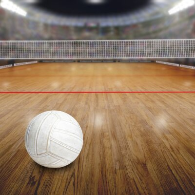Posters Volley-ball, tribunal, balle, bois, plancher, copie, espace