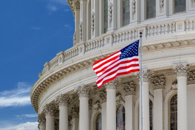 Posters Washington, DC, capitol, détail, nuageux, ciel