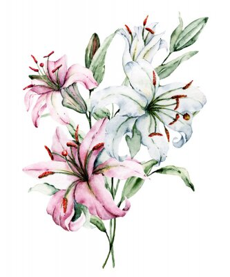Posters Watercolor flowers lilies. Floral bouquet, clip art. Arrangement with lily perfectly for printing design on invitations, cards, wall art and other. Isolated on white. Hand painted.