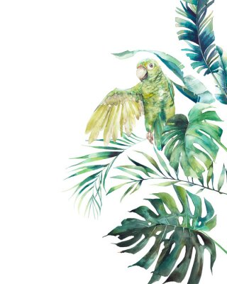 Posters Watercolor green parrot frame. Hand drawn greeting card design with exotic leaves and branches isolated on white background. Palm tree, banana leaves, mostera plants