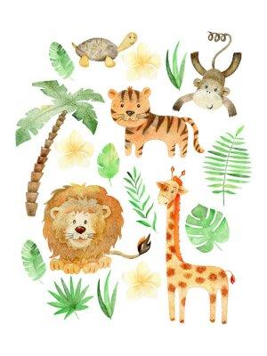 Posters Watercolor safari arrangements.