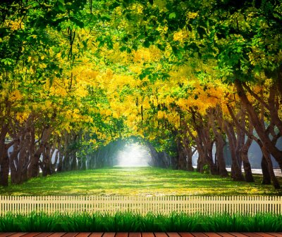 Posters wood terrace with fresh and green beautiful of summer blooming y