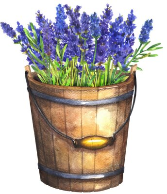 Posters Wooden bucket with lavender