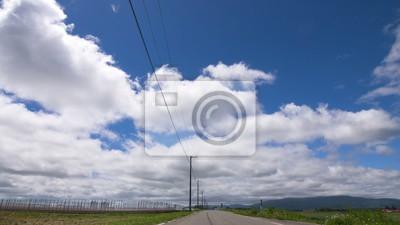 夏 の 雲 と 電 柱 の シ ル エ ッ ト 真 っ す ぐ 続 く 道