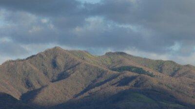 山 の 茶色 い 山