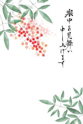 Posters 南天の実 寒中見舞い 背景 水彩 イラスト