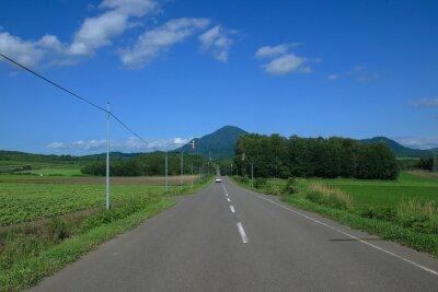 海道 の 道