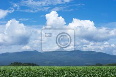 山 と 雲