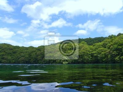 湖 と 森